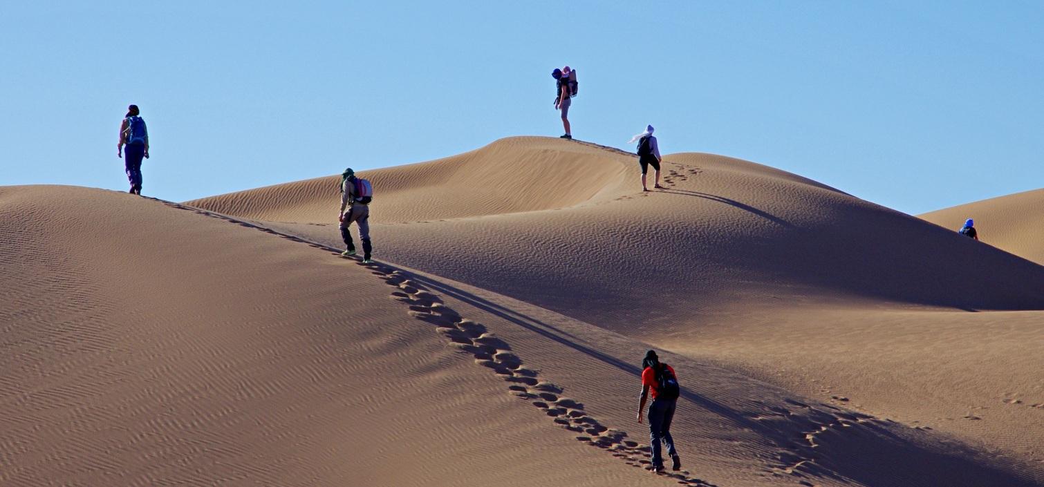 wandering in Marrakesch